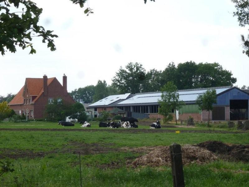 Immo marc coppieters nijlen boerderij for Boerderij met stallen te koop